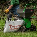 Tazz K42 Chipper Shredder with Briggs & Stratton By Earthquake 22753